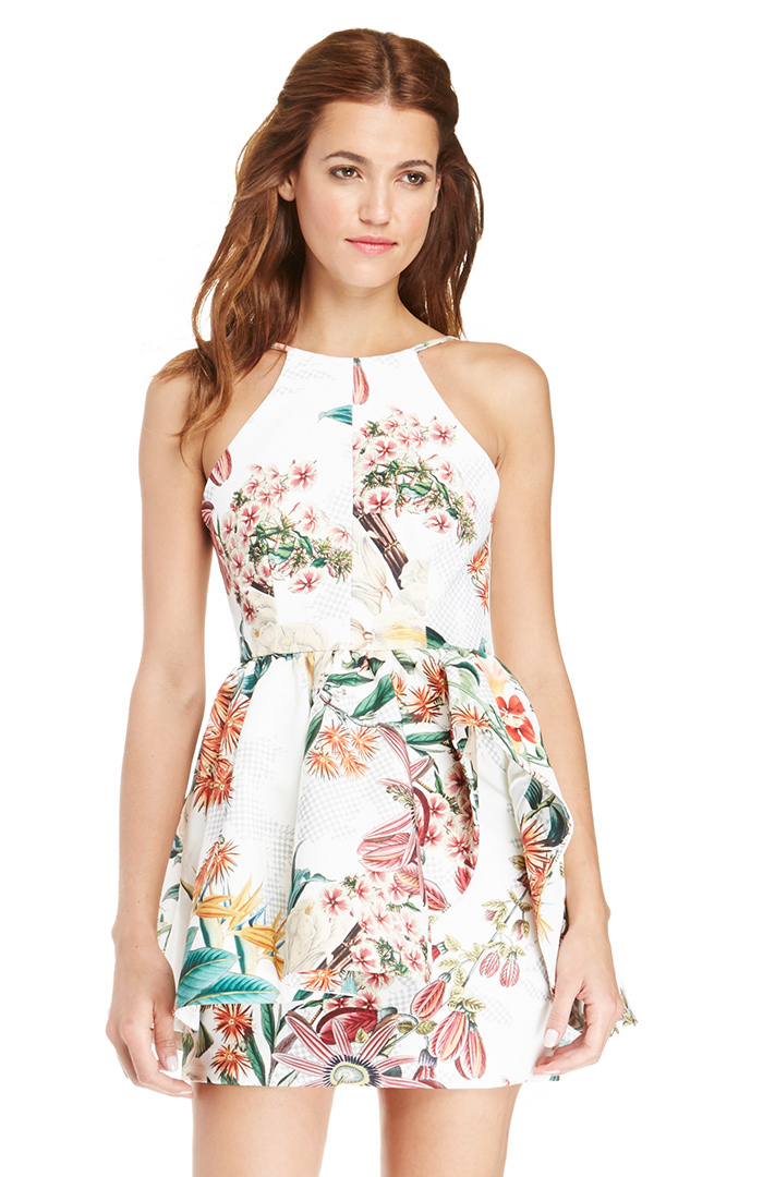 Cameo Winter Wind Floral Dress In Floral Multi Dailylook