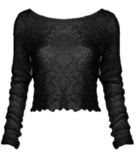 Full Lace Long Sleeve Crop Top