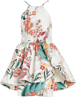 Cameo Winter Wind Floral Dress