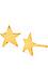 Gorjana Star Studs Thumb 1
