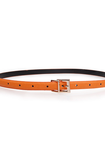 Creamsicle Skinny Belt Slide 1