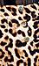 Leopard Print Sailor Shorts Thumb 4