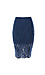 Keepsake Lace Pencil Skirt Thumb 1