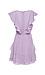 Flutter Sleeve Ruffled Dress Thumb 2