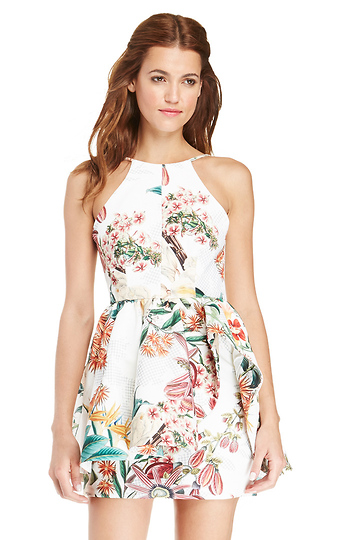 Cameo Winter Wind Floral Dress Slide 1