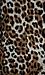 BB Dakota Hazel Leopard Coat Thumb 5